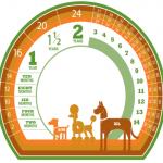 Cách xác định tuổi cho cún cưng của bạn