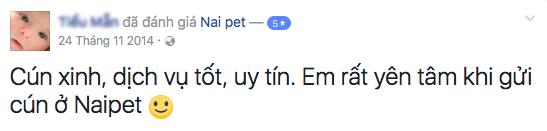 trong-giu-cho-meo-ha-noi-naipet36