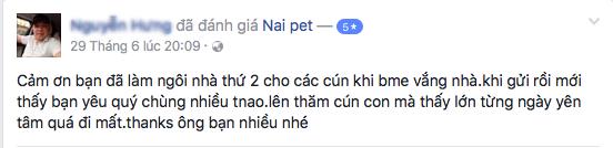 trong-giu-cho-meo-ha-noi-naipet7
