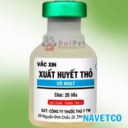 benh-xuat-huyet-truyen-nhiem-o-tho-rabbit-hemorrhagic-disease-rhd 4