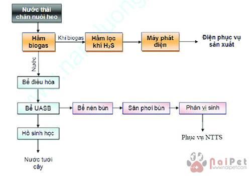 nuoi-ca-nuoc-ngot-tu-ba-thai-ham-biogas 1